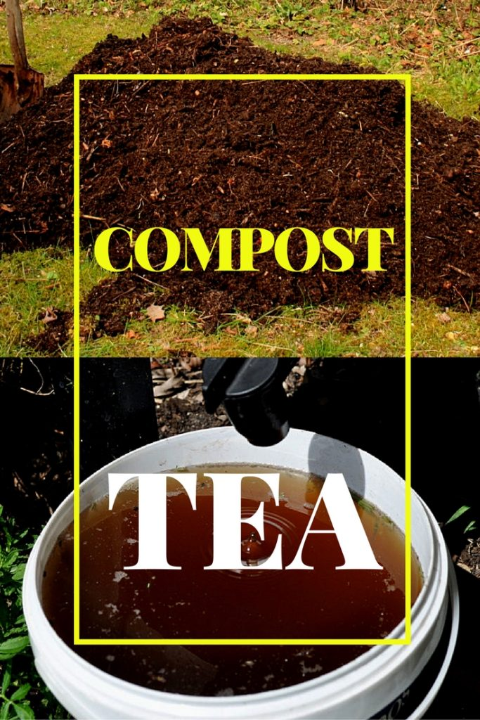 compost tea recipe