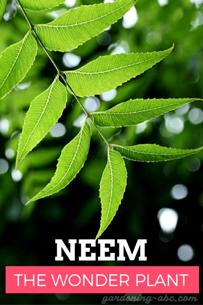 uses of neem cakes
