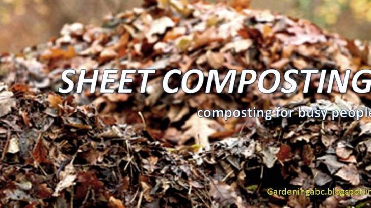 what is sheet composting
