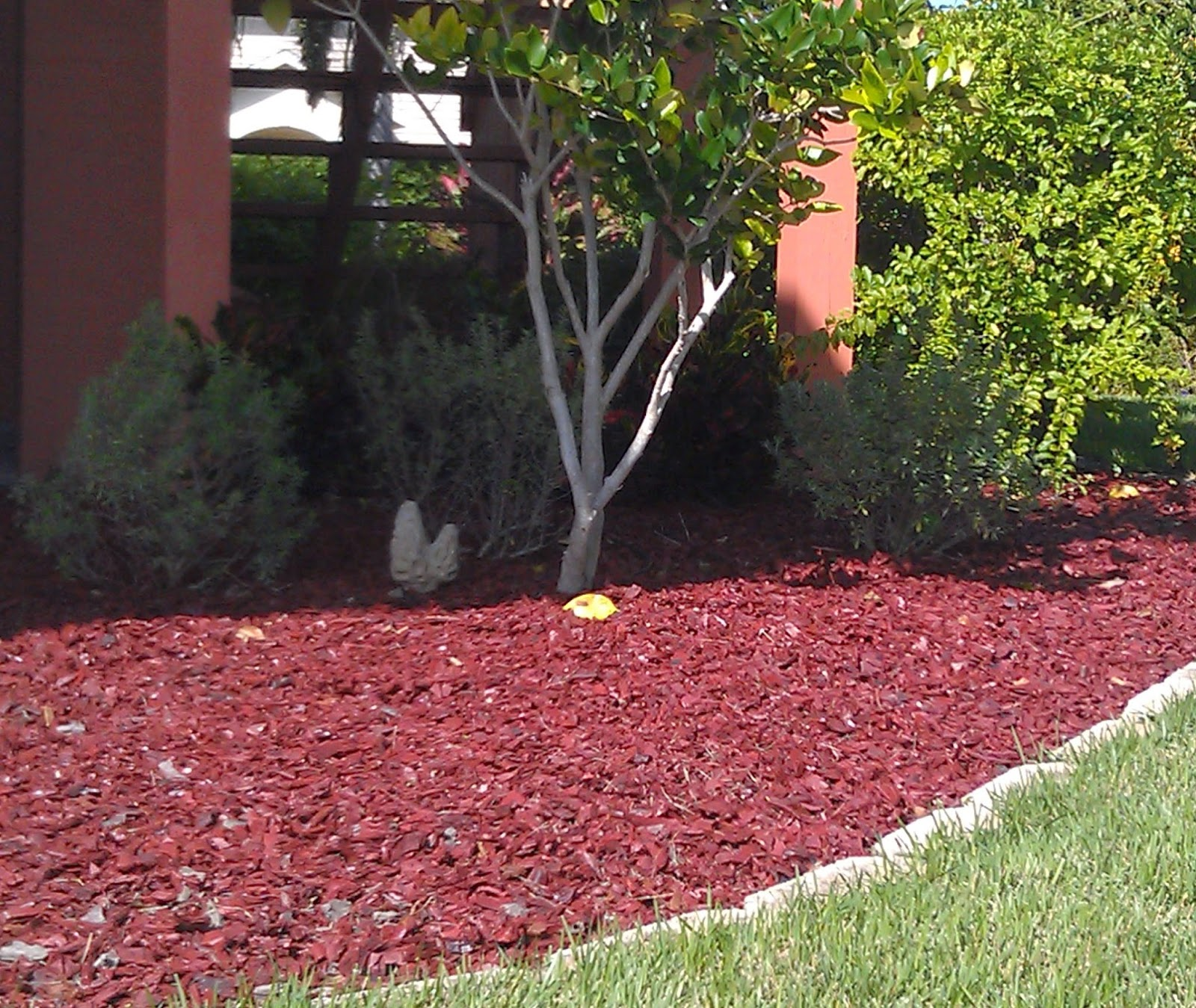 difference between compost and mulch