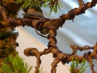 wire the bonsai