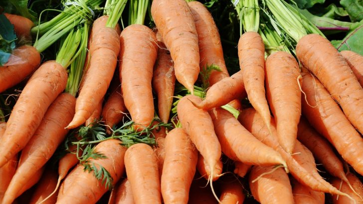 Growing Carrots Faq