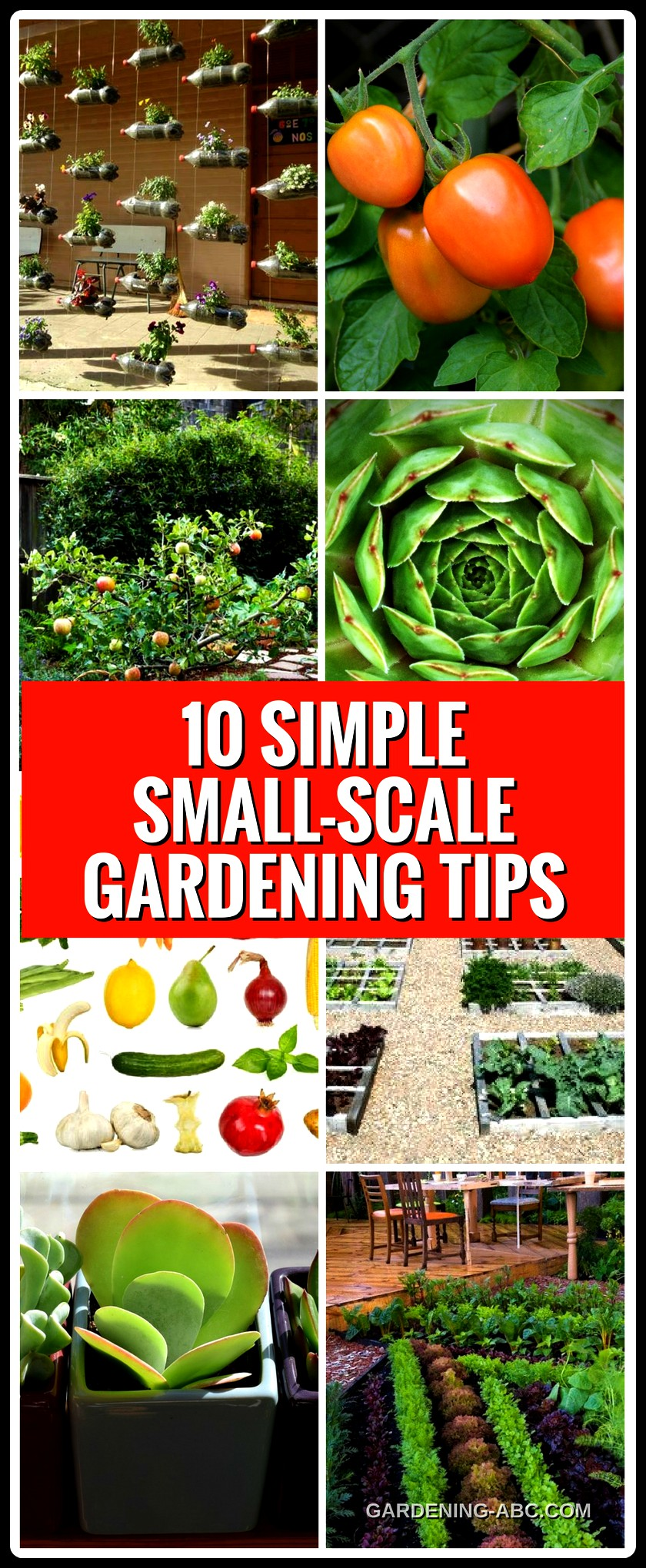 small scale gardening tips