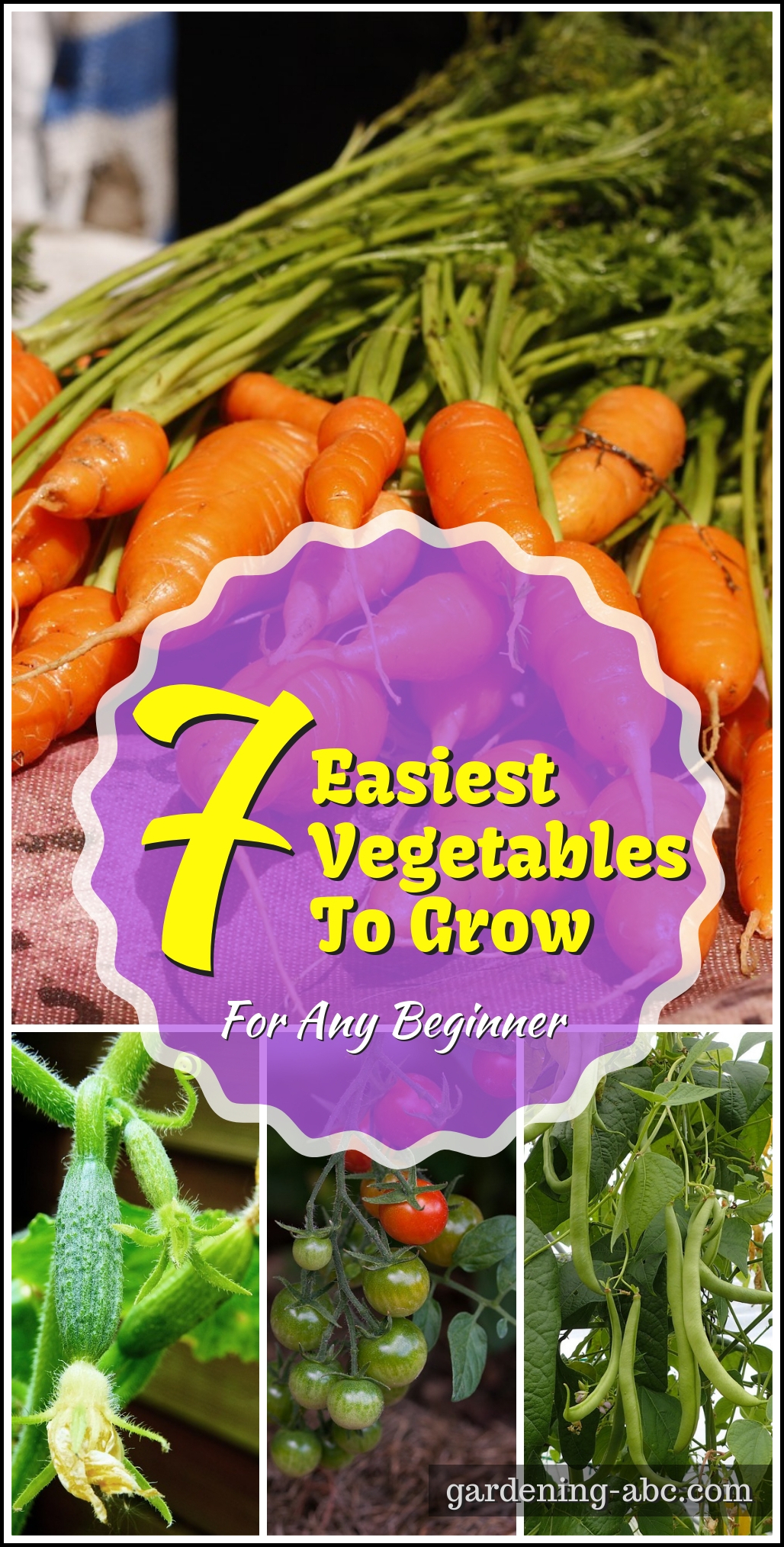 Easiest Vegetables To Grow for beginners