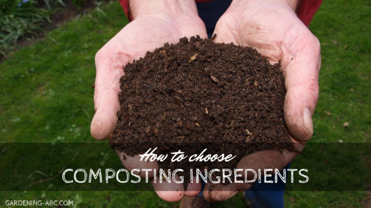 composting ingredients